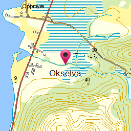 Image from object titled Okselva