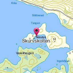 Image from object titled Skurvskolten