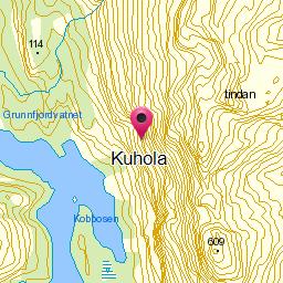 Image from object titled Kuhola