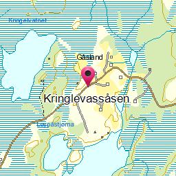 Image from object titled Kringlevassåsen