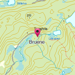 Image from object titled Bruene