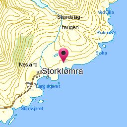 Image from object titled Storklømra
