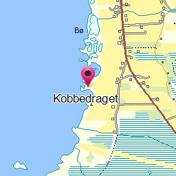Image from object titled Kobbedraget
