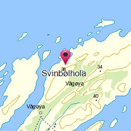 Image from object titled Svinbølhola