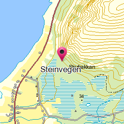 Image from object titled Steinvegen