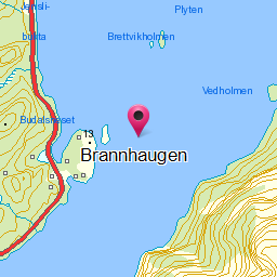 Image from object titled Brannhaugen