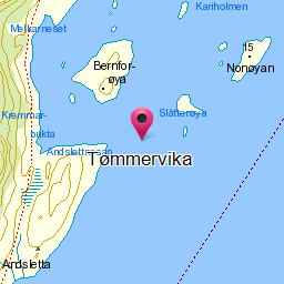 Image from object titled Tømmervika