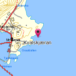 Image from object titled Kvalskjæran