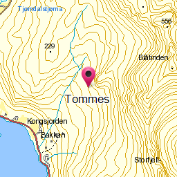 Image from object titled Tommes