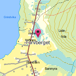 Image from object titled Torvberget