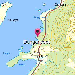 Image from object titled Dunganeset
