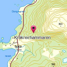 Image from object titled Kråkreirhammaren