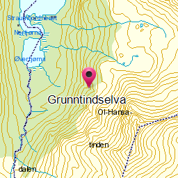 Image from object titled Grunntindselva
