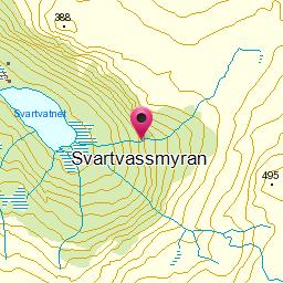 Image from object titled Svartvassmyran
