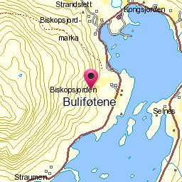 Image from object titled Buliføtene