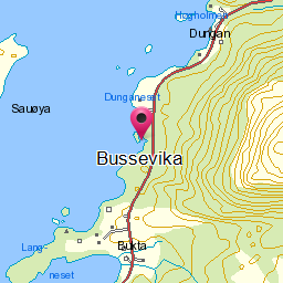 Image from object titled Bussevika
