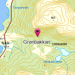 Image from object titled Grønbakkan