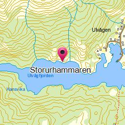 Image from object titled Storurhammaren