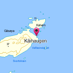 Image from object titled Kaihaugen