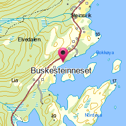 Image from object titled Buskesteinneset