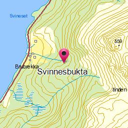 Image from object titled Svinnesbukta