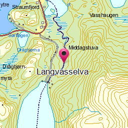 Image from object titled Langvasselva