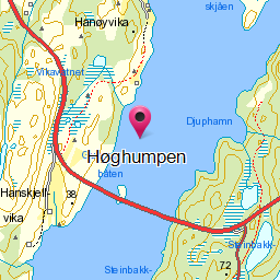 Image from object titled Høghumpen