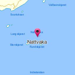 Image from object titled Nattvaka