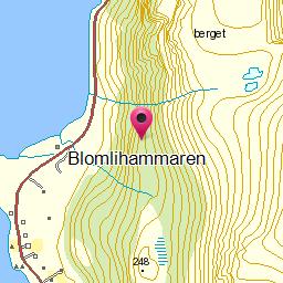 Image from object titled Blomlihammaren
