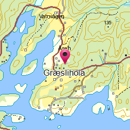 Image from object titled Græslihola