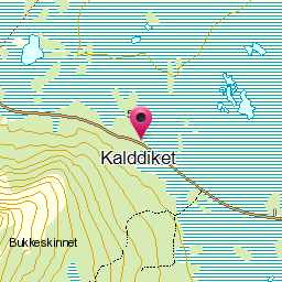 Image from object titled Kalddiket