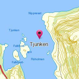Image from object titled Tjunken
