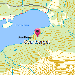 Image from object titled Svartberget
