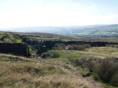 Track 144 running S on Beard Moor on W side of Chinley Churn. Gate at boundary of New Mills and Chinley.
