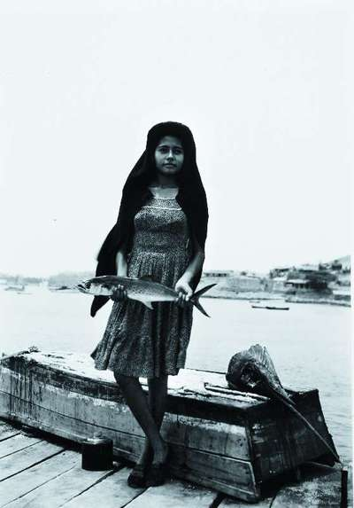 Image from object titled Un Pez Que Haman Sierra (A Fish Called Saw)