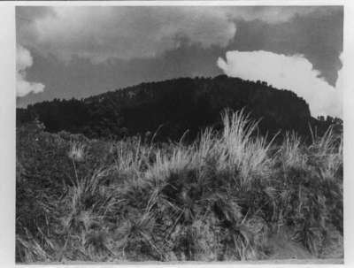 Black Mountain  White Cloud (Montana Negra  Nube Blanca)