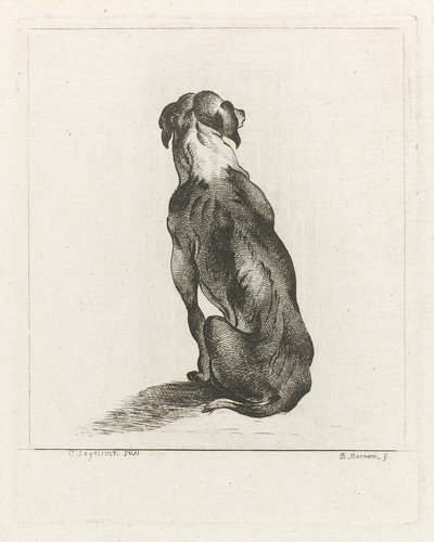 Zittende hond op de rug gezien