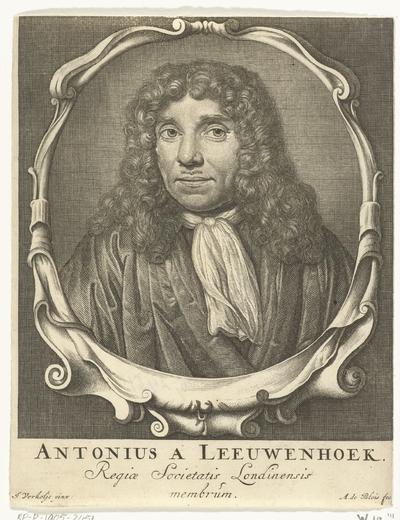 Portret van Antonie van Leeuwenhoek; Antonius a Leeuwenhoek Regiae Societatis Londinensis