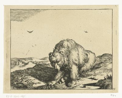 Zittende beer van voren gezien; Beren