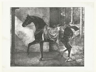 Zwart volbloedpaard in een stal; Cheval noir attaché dans une écurie; Verschillende studies van paarden; Etudes de chevaux
