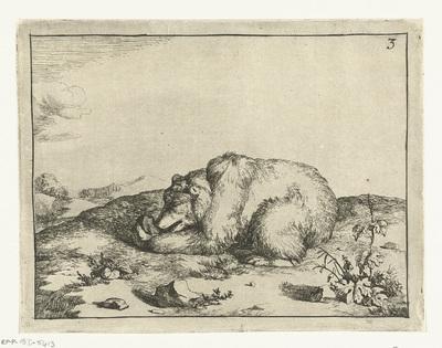 Liggende beer, iets etend uit zijn linker poot; Beren