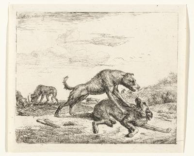 Vechtende honden; Verschillende dieren