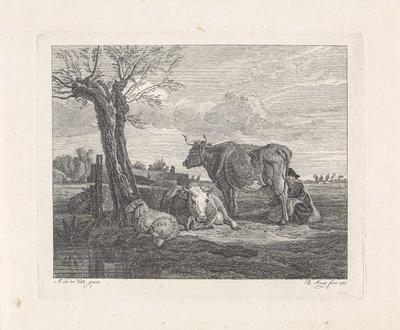 Vrouw bij het melken