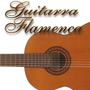 Guitarra flamenca Vol.2