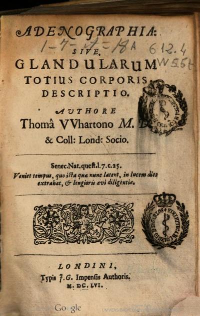 Adenographia, sive Glandularum totius corporis descriptio