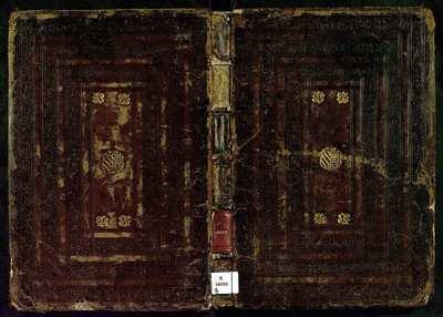 Libro de musica de vihuela [Música notada]