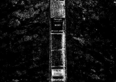 Ecos de los Andes [Texto impreso] :]poesias líricas : segunda colección, de 1849 a 1860