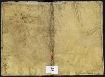 Ordine del brachio spirituale et demaniale... che furono convocati nel colloquio et Parlamento genérale che fu celebrato nell'anno 1624 in la cita di Palermo [Manuscrito] :]per ordine delle Viceré Principe Filiberto...