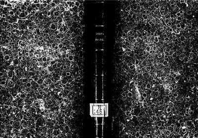 Diapason instructivo [Texto impreso] :]consonancias musicas y morales, documentos á los profesores de música, carta á sus discípulos, de don Antonio Rodriguez de Hita ... sobre un breve y facil methodo de estudiar la...