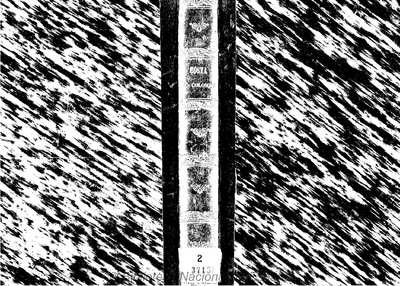 Cristoforo Colombo.. Libri VIII
